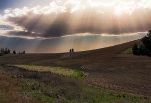 Obrábanie pôdy krok po kroku